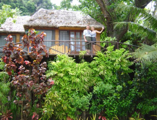 Fiji Treehouse