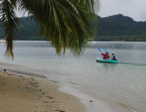 Quick Kayak trip