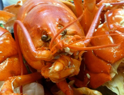 Lobstah!  Lobstah!!