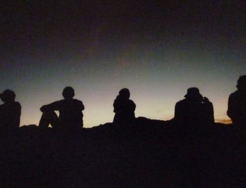 Valle de la Luna Hike