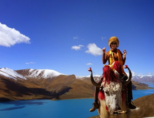 Tibet on the road…
